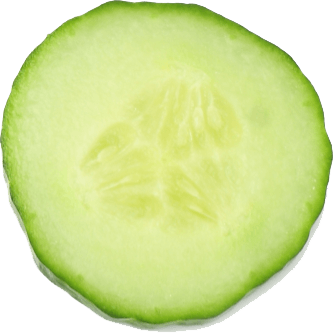 a slice of cucumber